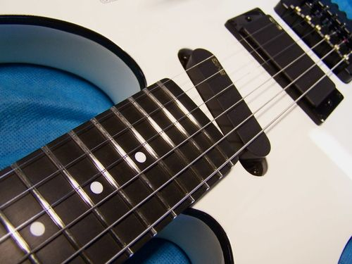 Steinberger Let Us Build Your Custom Dream Steinberger