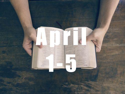 Bible Reading Plan | porchlife