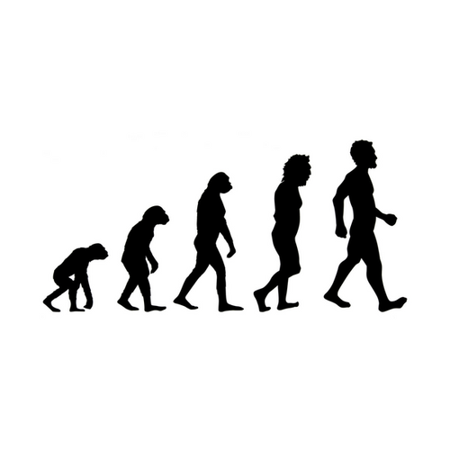 icon of the evolution of man
