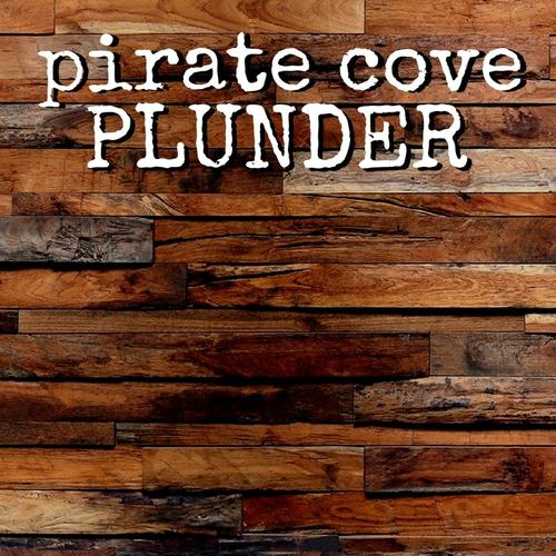 Escape Room - Pirate Cove Plunder