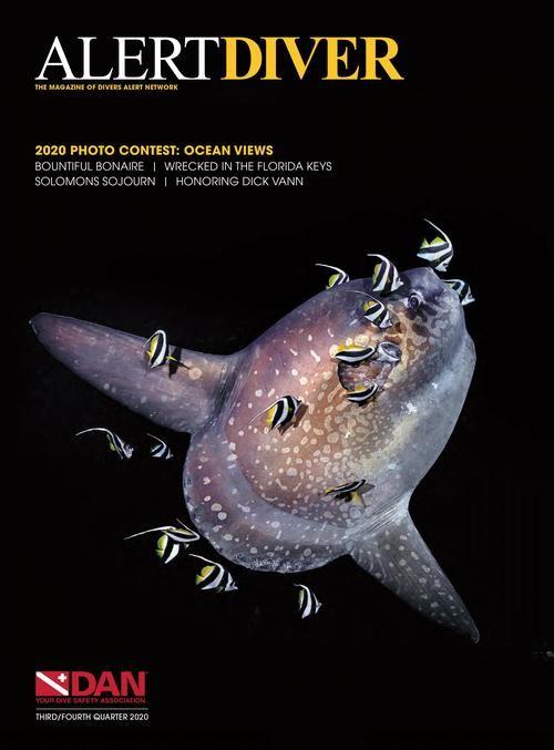 alert-diver-q3-q4-2020