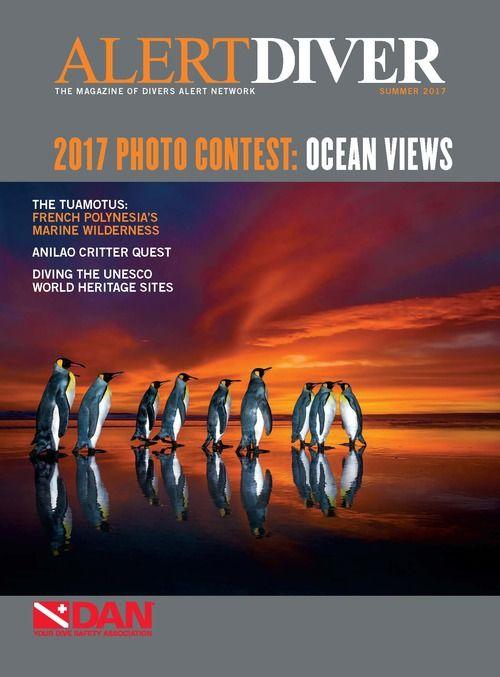 alert-diver-q3-2017
