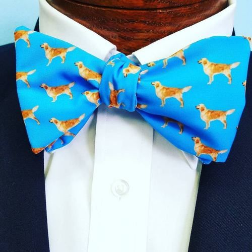 golden retriever dog bow tie