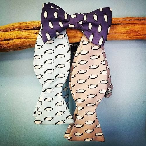 penguins bow tie