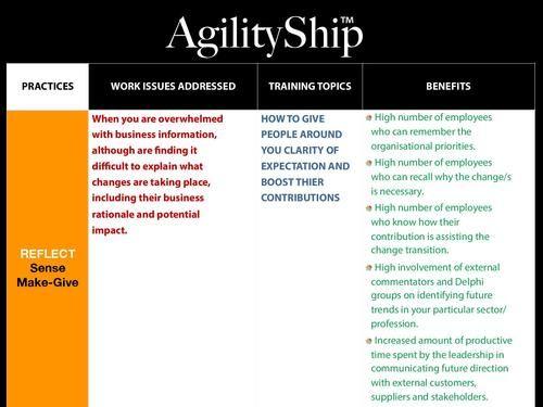 AgilityShip Practice #3 Sense Make-Give