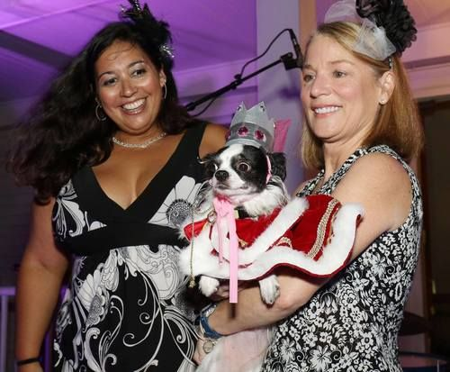 Nadene, along with two friends and business owners, created POSH (Paws Often Steal Hearts), a gala style cocktail party. learn more about this event