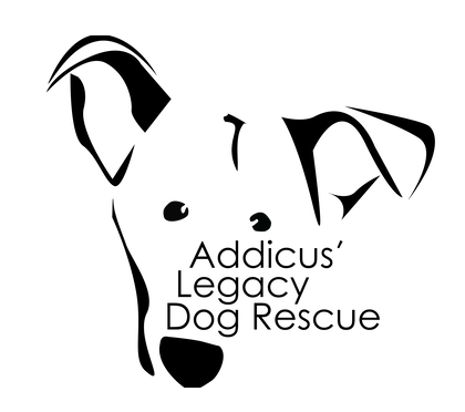 New Hope Animal Rescue