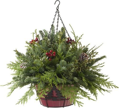 Yuletide Hanging Basket